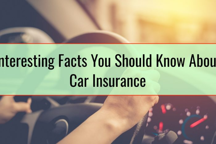 Interesting Facts You Should Know About Car Insurance