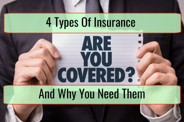 4 Types of Insurance and Why You Need Them